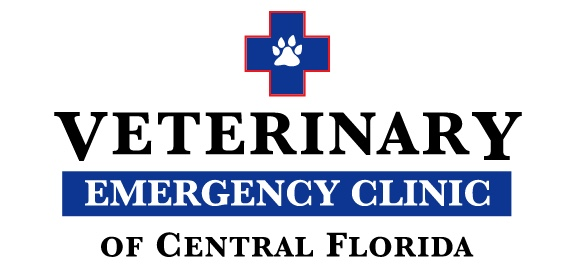 Veterinary Emergency Clinic Image
